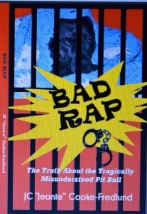 BAD RAP-Front Cover